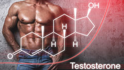Deficit di testosterone e alimenti light.